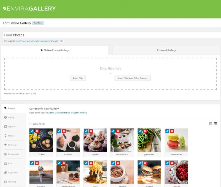 Envira Gallery – Core Plugin Nulled v.1.8.11.1 Free Download