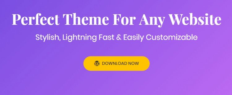 Astra Pro – Extend Astra Theme With the Pro Addon v3.5.1 Nulled
